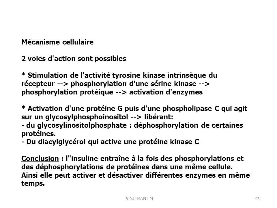 Mécanisme cellulaire 2 voies d'action sont possibles * Stimulation de l'activité tyrosine kinase intrinsèque du récepteur --> phosphorylation d'une sé