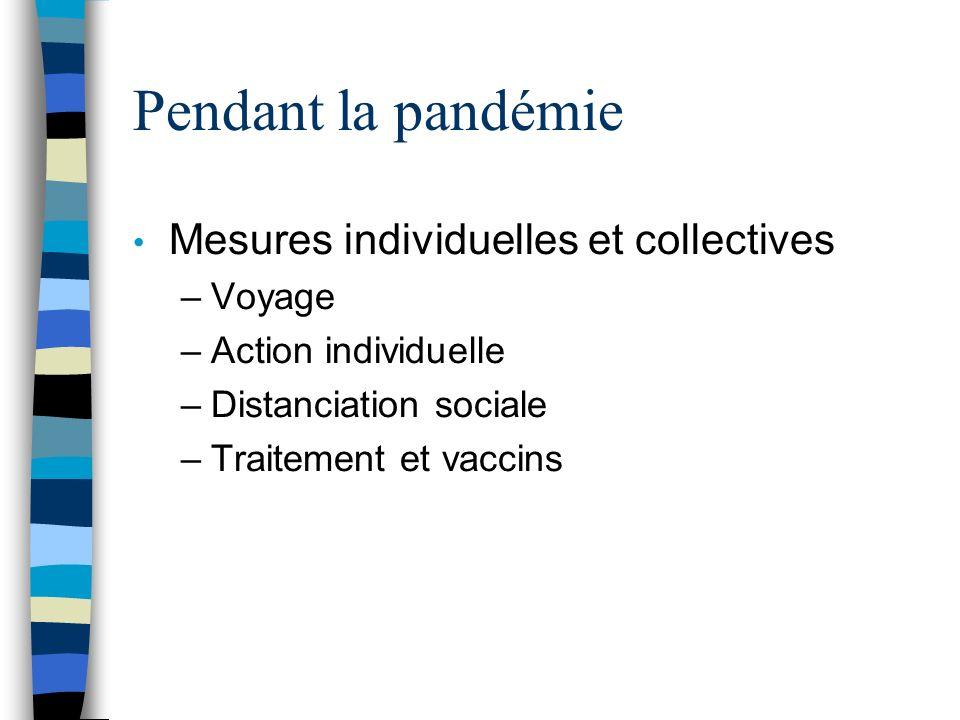 Pendant la pandémie Mesures individuelles et collectives –Voyage –Action individuelle –Distanciation sociale –Traitement et vaccins