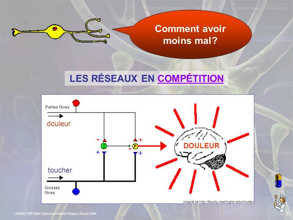 UQAM, FPE7650 Catherine Hamel-Pâquet, février 2004 10 LA DOULEUR…PLUS EN DÉTAIL