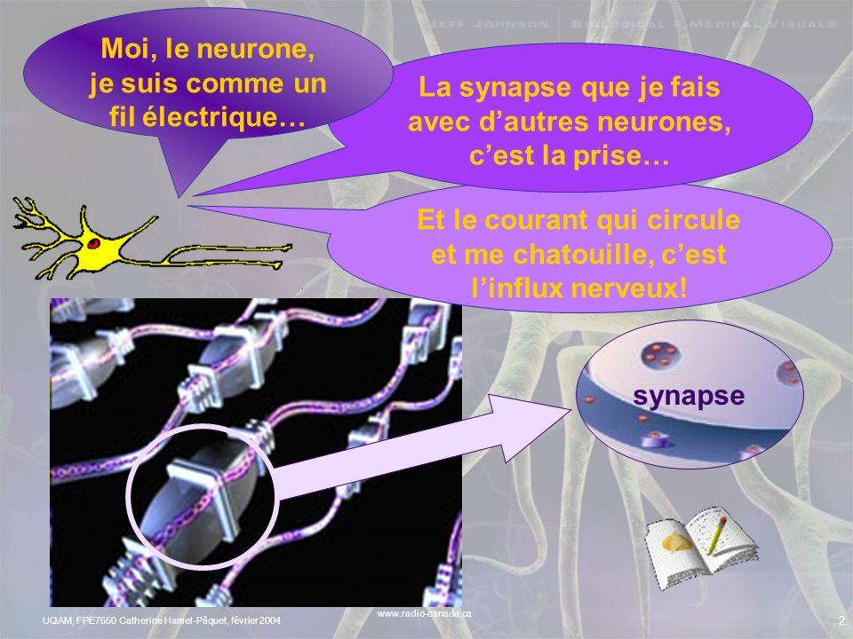 UQAM, FPE7650 Catherine Hamel-Pâquet, février 2004 1 Que voyez- vous?