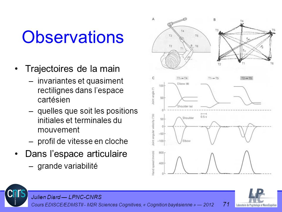 Julien Diard LPNC-CNRS Cours EDISCE/EDMSTII - M2R Sciences Cognitives, « Cognition bayésienne » 2012 71 Observations Trajectoires de la main –invarian