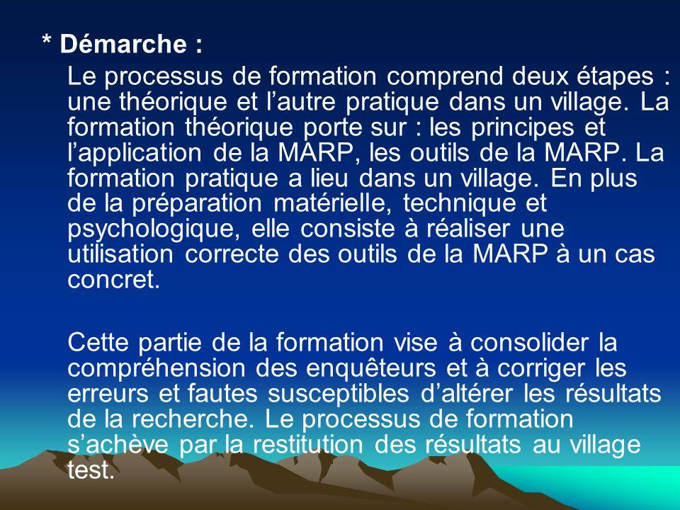 * Démarche : Le processus de formation comprend deux étapes : une théorique et lautre pratique dans un village. La formation théorique porte sur : les