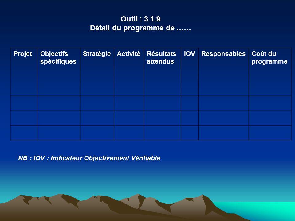 Outil : 3.1.9 Détail du programme de …… ProjetObjectifs spécifiques StratégieActivitéRésultats attendus IOVResponsablesCoût du programme NB : IOV : In