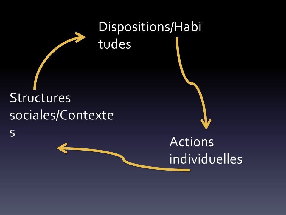 Structures sociales/Contexte s Dispositions/Habi tudes Actions individuelles