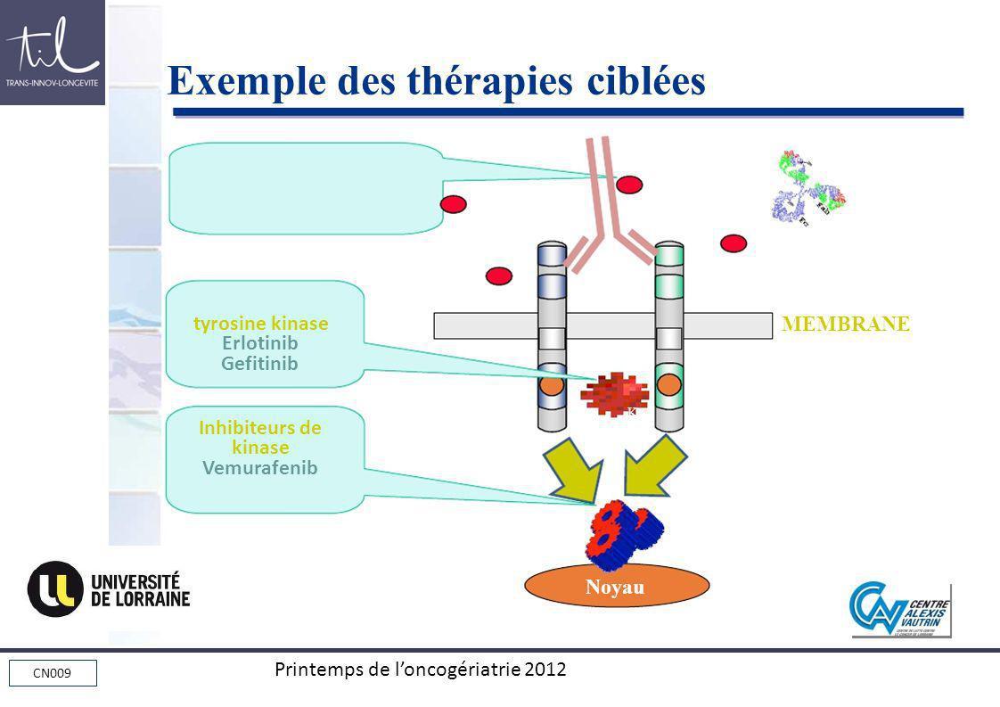 CN009 Printemps de loncogériatrie 2012 Noyau MEMBRANE KK tyrosine kinase Erlotinib Gefitinib Inhibiteurs de kinase Vemurafenib Exemple des thérapies c