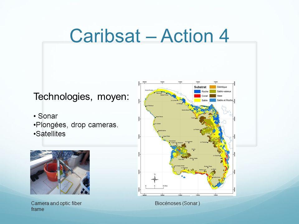 Caribsat – Action 4 Technologies, moyen: Sonar Plongées, drop cameras. Satellites Camera and optic fiber frame Biocénoses (Sonar )