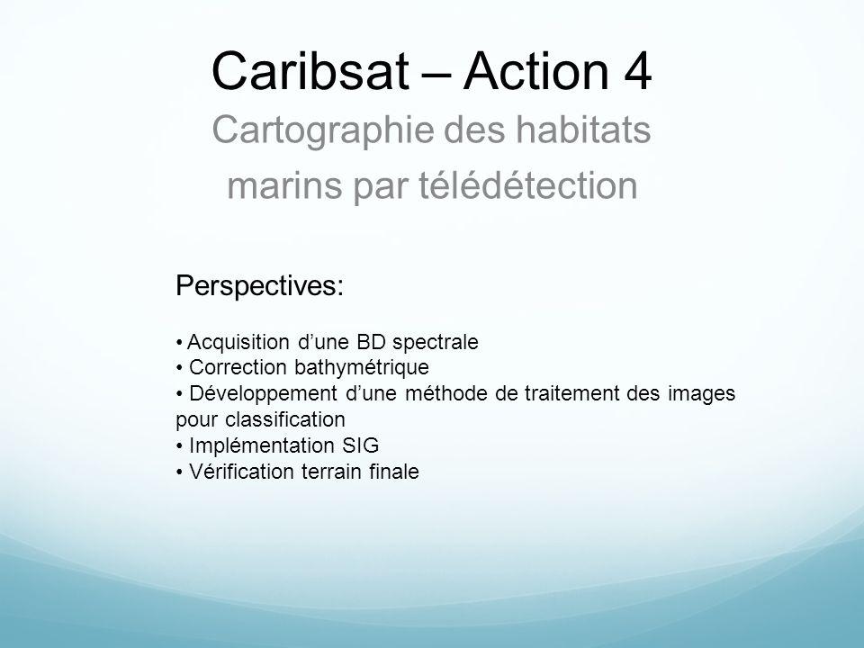 Caribsat – Action 4 Cartographie des habitats marins par télédétection Perspectives: Acquisition dune BD spectrale Correction bathymétrique Développem