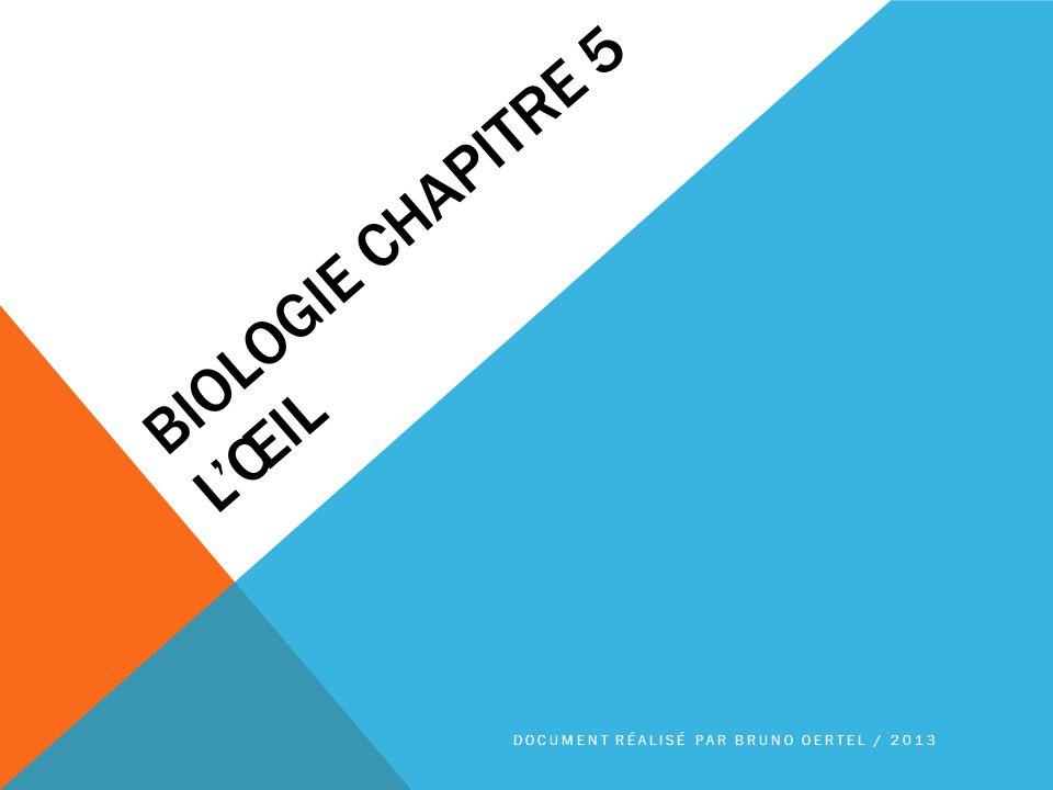 BIOLOGIE CHAPITRE 5 LŒIL DOCUMENT RÉALISÉ PAR BRUNO OERTEL / 2013