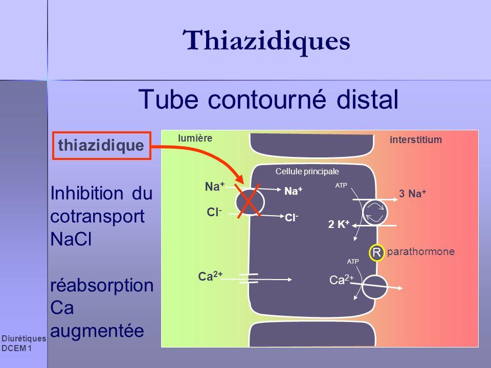 Diurétiques DCEM 1 Thiazidiques Tube contourné distal Inhibition du cotransport NaCl réabsorption Ca augmentée Cellule principale lumière interstitium