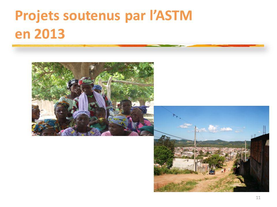 Projets soutenus par lASTM en 2013 11