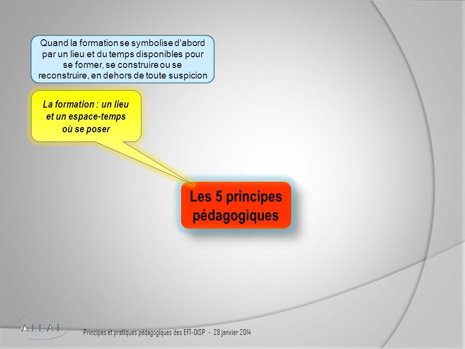 Des outils et pratiques, des témoignages, un mémo et une citation pour illustrer chaque pratique et fixer les idées Principes et pratiques pédagogiques des EFT-OISP - 28 janvier 2014