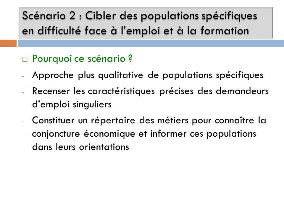 Pourquoi ce scénario ? - Approche plus qualitative de populations spécifiques - Recenser les caractéristiques précises des demandeurs demploi singulie