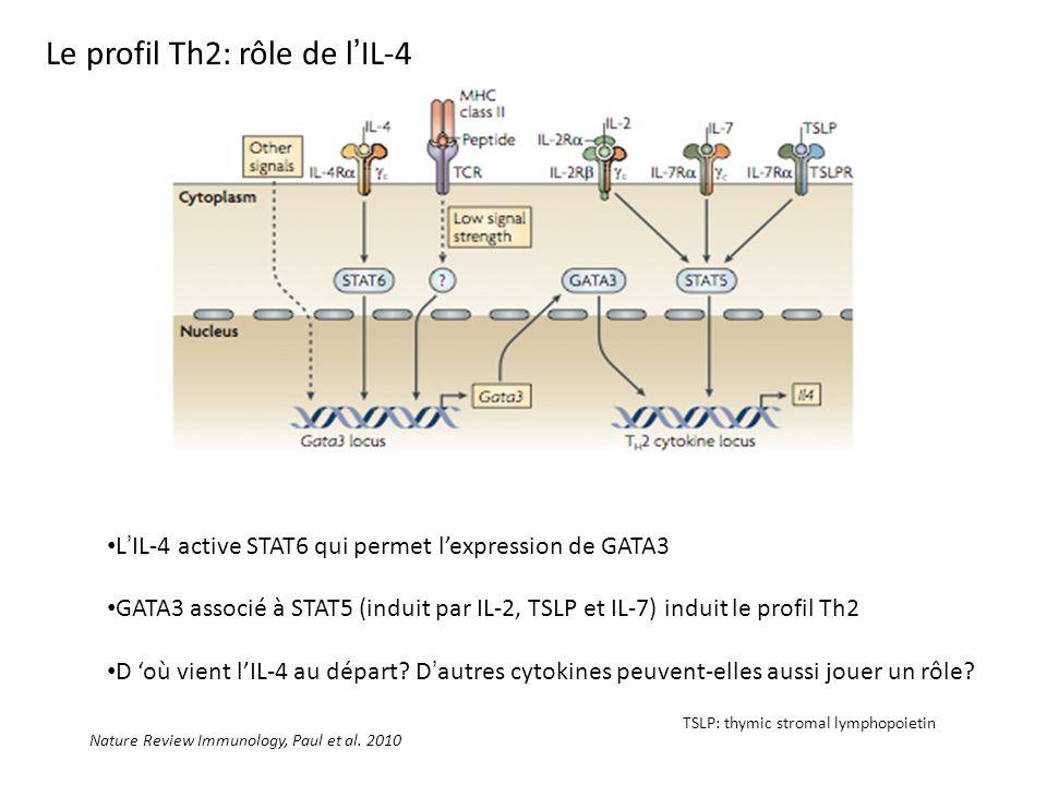 Nature Review Immunology, Paul et al. 2010 LIL-4 active STAT6 qui permet lexpression de GATA3 GATA3 associé à STAT5 (induit par IL-2, TSLP et IL-7) in