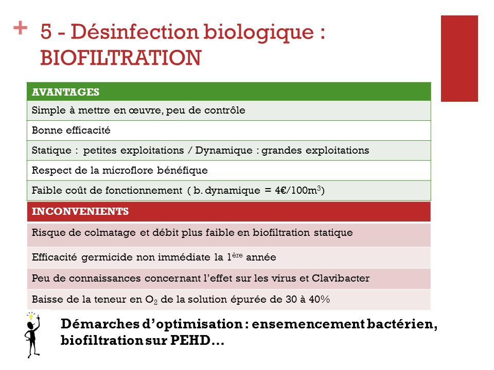 + 5 - Désinfection biologique : BIOFILTRATION AVANTAGES Simple à mettre en œuvre, peu de contrôle Bonne efficacité Statique : petites exploitations /