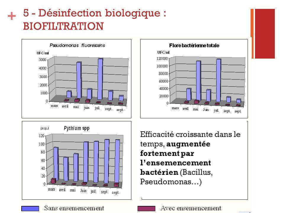 + Efficacité croissante dans le temps, augmentée fortement par lensemencement bactérien (Bacillus, Pseudomonas…) 5 - Désinfection biologique : BIOFILT