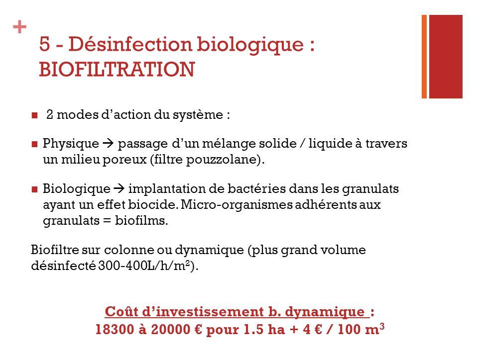 + 5 - Désinfection biologique : BIOFILTRATION Schéma : biofiltration dynamique de la solution de drainage - CTIFL