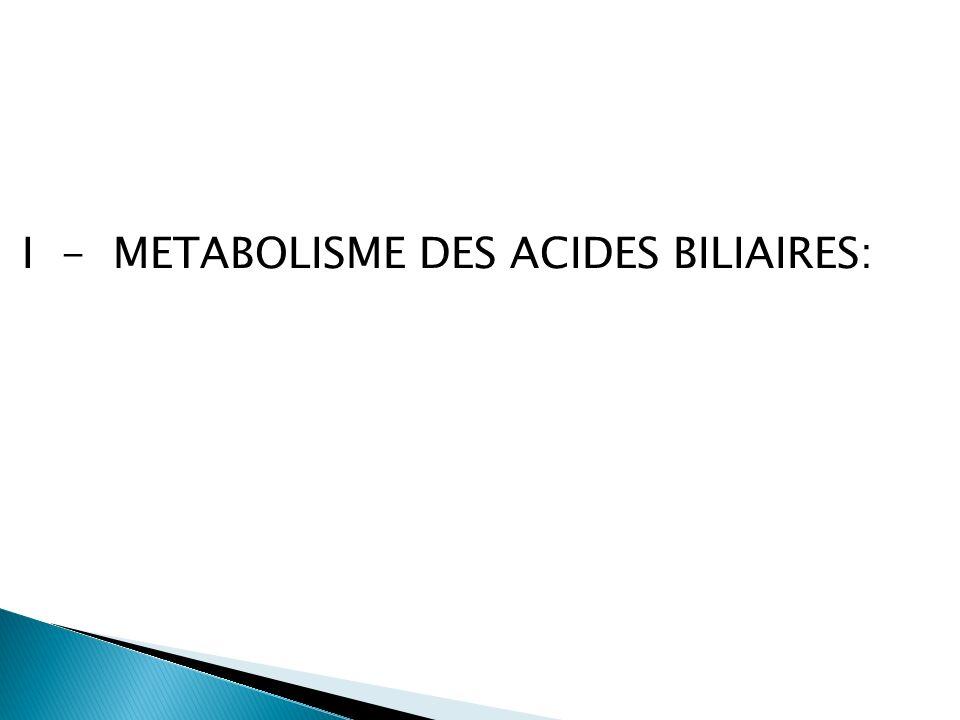 FOIE ACIDE CHOLIQUE ACIDE CHENODESOXYCHOLIQUE CHOLESTEROL ACIDES BILIAIRES PRIMAIRES 7 alpha-hydroxylase