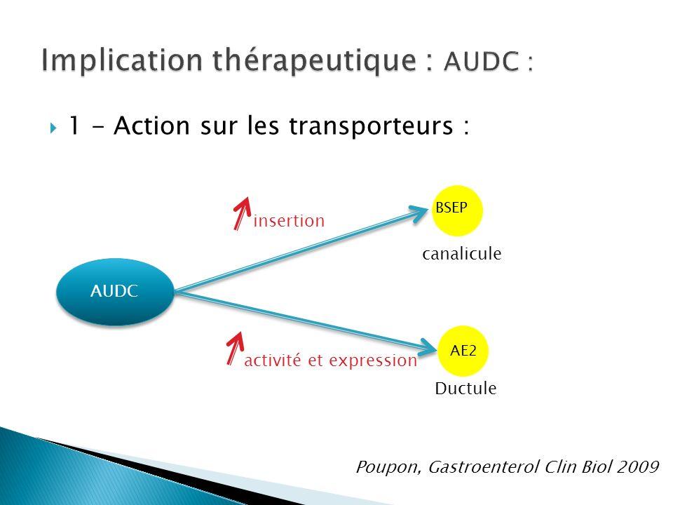 1 - Action sur les transporteurs : AUDC BSEP AE2 canalicule Ductule insertion activité et expression Poupon, Gastroenterol Clin Biol 2009