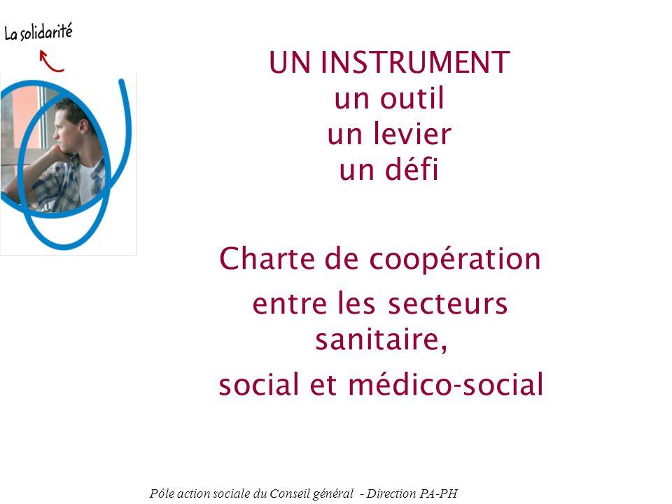 Pôle action sociale du Conseil général - Direction PA-PH 5 La coopération entre le sanitaire, le social et le médico-social existe mais elle est très hétérogène.