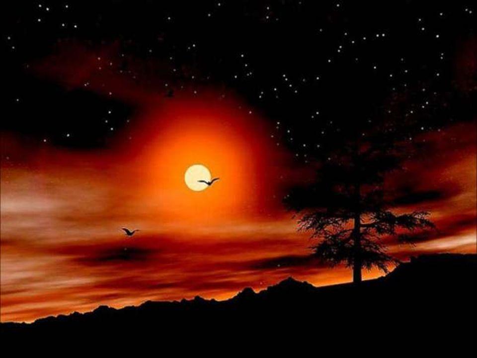 Pour ce coucher de soleil qui pare le ciel de lautomne des plus belles couleurs.