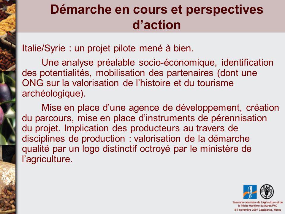 Démarche en cours et perspectives daction Italie/Syrie : un projet pilote mené à bien.