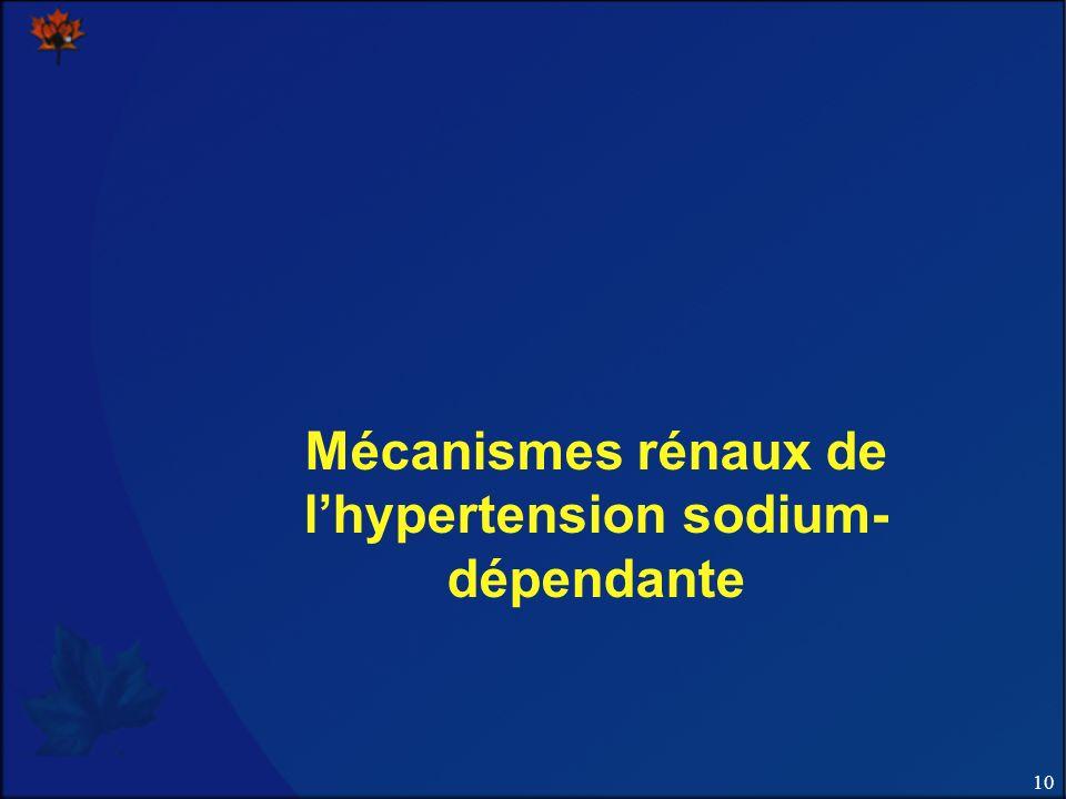 10 Mécanismes rénaux de lhypertension sodium- dépendante