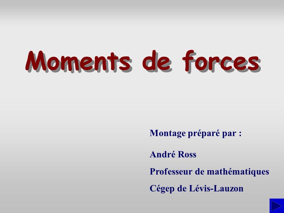 Montage préparé par : André Ross Professeur de mathématiques Cégep de Lévis-Lauzon Moments de forces Moments de forces