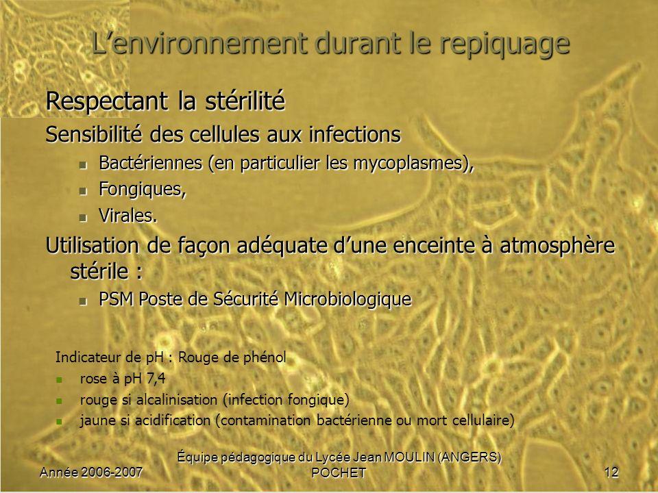 Année 2006-2007 Équipe pédagogique du Lycée Jean MOULIN (ANGERS) POCHET12 Lenvironnement durant le repiquage Respectant la stérilité Sensibilité des c
