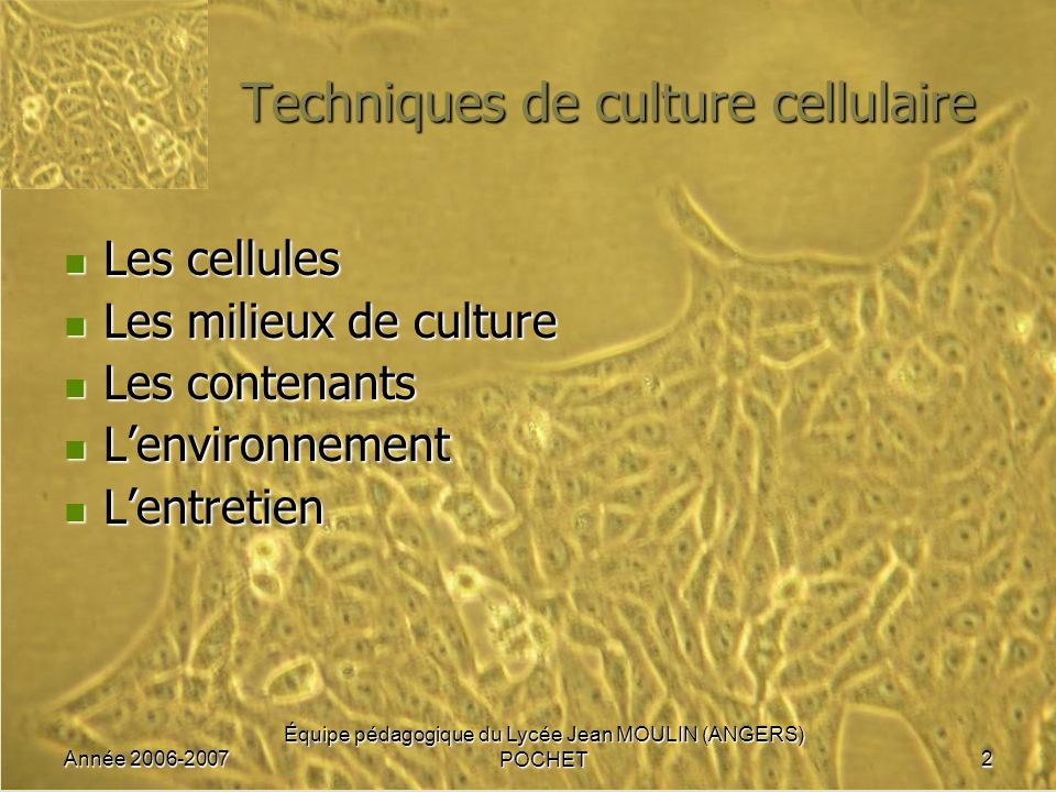 Année 2006-2007 Équipe pédagogique du Lycée Jean MOULIN (ANGERS) POCHET2 Techniques de culture cellulaire Les cellules Les cellules Les milieux de cul