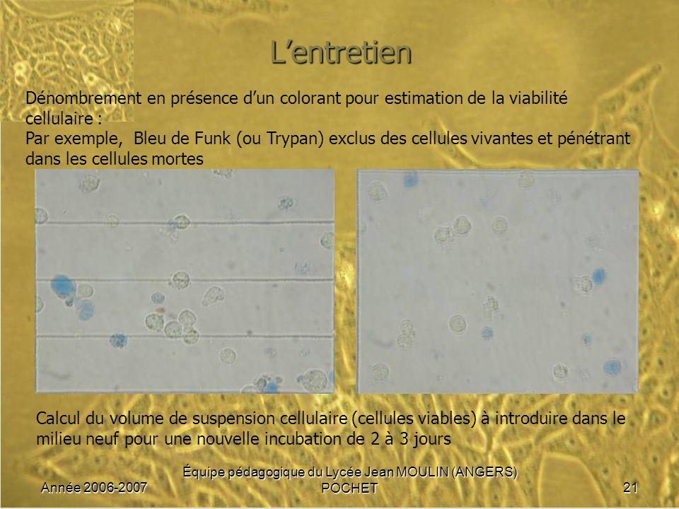 Année 2006-2007 Équipe pédagogique du Lycée Jean MOULIN (ANGERS) POCHET21 Lentretien Dénombrement en présence dun colorant pour estimation de la viabi