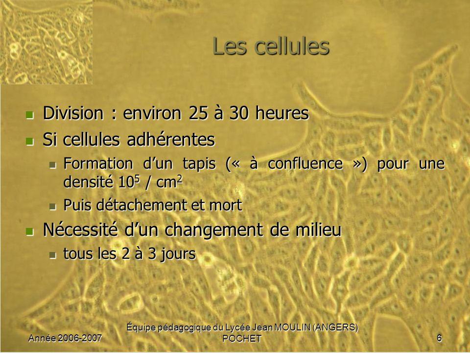 Année 2006-2007 Équipe pédagogique du Lycée Jean MOULIN (ANGERS) POCHET7 Les milieux de culture Exigences cellulaires minimales Exigences cellulaires minimales eau eau ions minéraux donnant une osmolarité identique à celle du sérum physiologique ions minéraux donnant une osmolarité identique à celle du sérum physiologique source de carbone et d énergie (glucose par exemple) source de carbone et d énergie (glucose par exemple) source d azote : acides aminés source d azote : acides aminés source dacides gras source dacides gras pH constant 7,4 (indicateur de pH : rouge de phénol) grâce un système tampon CO 2 /HCO 3 - ou phosphates.