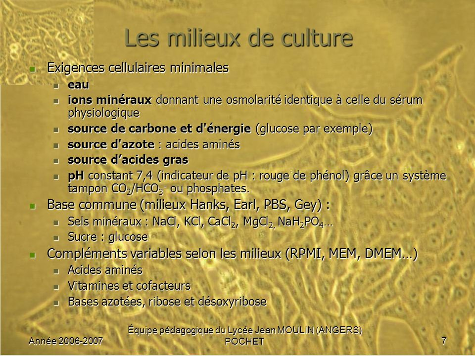 Année 2006-2007 Équipe pédagogique du Lycée Jean MOULIN (ANGERS) POCHET7 Les milieux de culture Exigences cellulaires minimales Exigences cellulaires