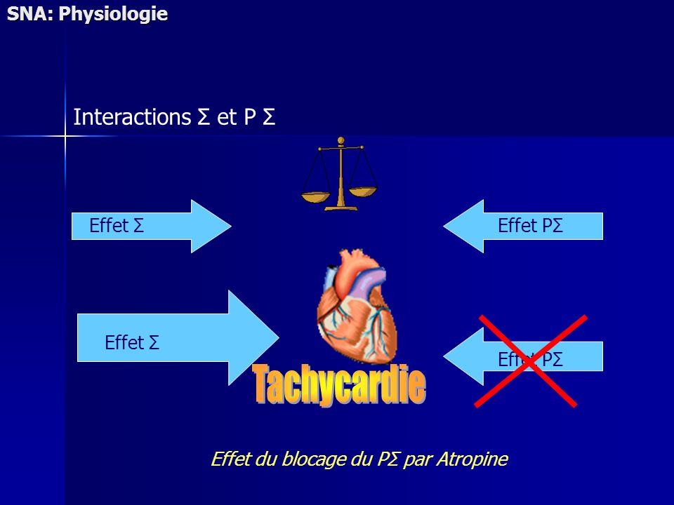 SNA: Physiologie Effet ΣEffet PΣ Effet Σ Effet PΣ Effet du blocage du PΣ par Atropine Interactions Σ et P Σ
