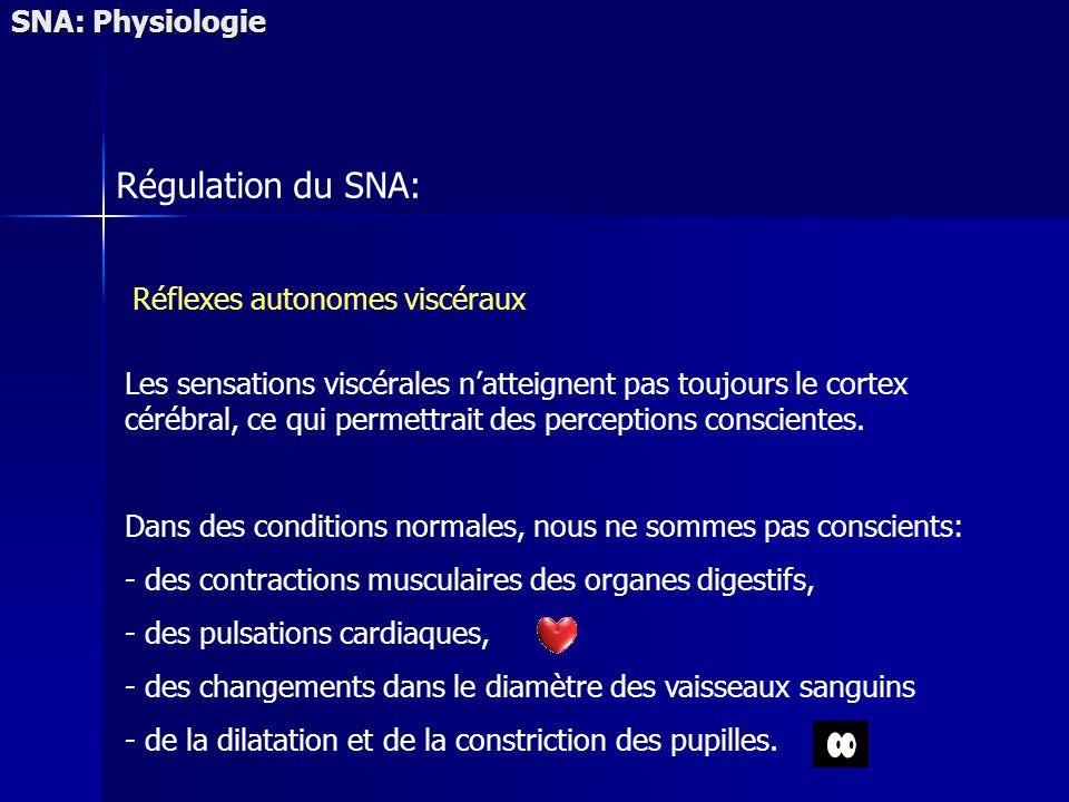 SNA: Physiologie Régulation du SNA: Réflexes autonomes viscéraux Les sensations viscérales natteignent pas toujours le cortex cérébral, ce qui permettrait des perceptions conscientes.