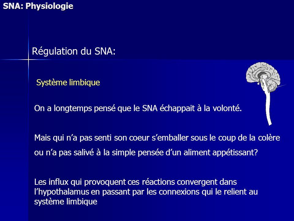Régulation du SNA: Système limbique On a longtemps pensé que le SNA échappait à la volonté. Mais qui na pas senti son coeur semballer sous le coup de