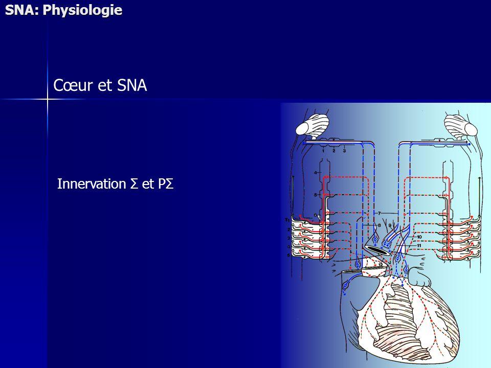 Cœur et SNA SNA: Physiologie Innervation Σ et PΣ