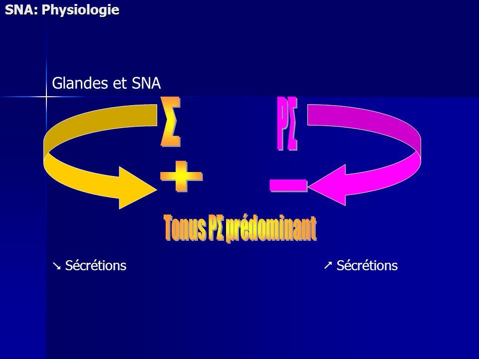 SNA: Physiologie Glandes et SNA Sécrétions