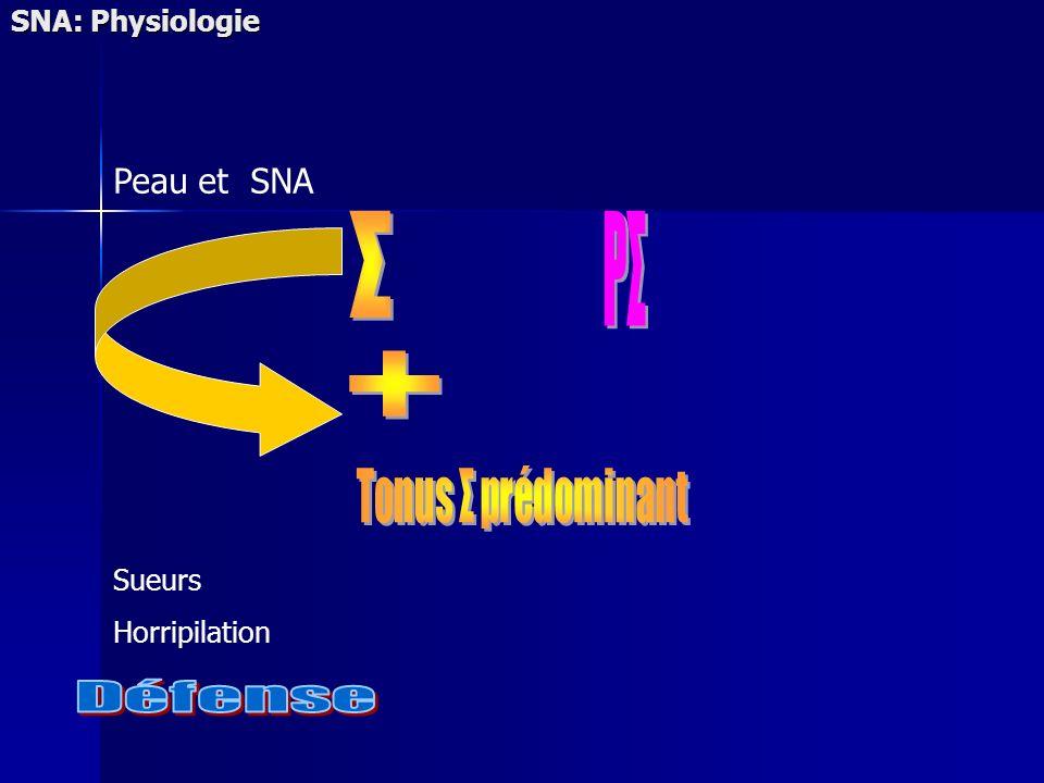 SNA: Physiologie Sueurs Horripilation Peau et SNA