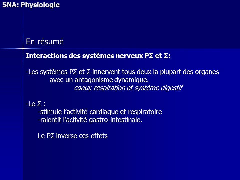 SNA: Physiologie En résumé Interactions des systèmes nerveux PΣ et Σ: -Les systèmes PΣ et Σ innervent tous deux la plupart des organes avec un antagonisme dynamique.