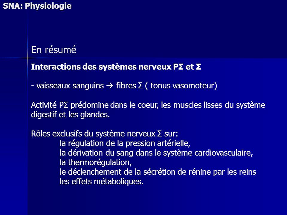 SNA: Physiologie En résumé Interactions des systèmes nerveux PΣ et Σ - vaisseaux sanguins fibres Σ ( tonus vasomoteur) Activité PΣ prédomine dans le c