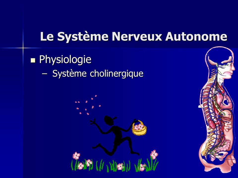 Physiologie Physiologie – Système cholinergique Le Système Nerveux Autonome