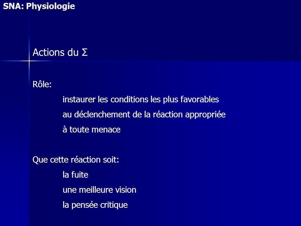 SNA: Physiologie Actions du Σ Rôle: instaurer les conditions les plus favorables au déclenchement de la réaction appropriée à toute menace Que cette réaction soit: la fuite une meilleure vision la pensée critique