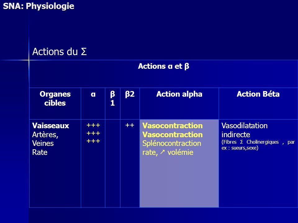 SNA: Physiologie Actions du Σ Actions α et β Organes cibles αβ1β1 β2Action alphaAction Béta Vaisseaux Artères, Veines Rate +++ ++ Vasocontraction Splé