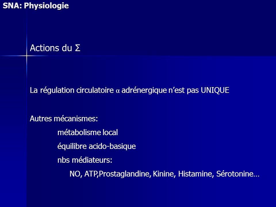 SNA: Physiologie Actions du Σ La régulation circulatoire α adrénergique nest pas UNIQUE Autres mécanismes: métabolisme local équilibre acido-basique n