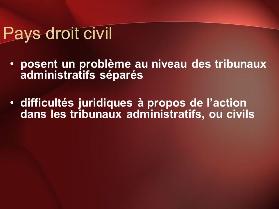 Pays droit civil posent un problème au niveau des tribunaux administratifs séparés difficultés juridiques à propos de laction dans les tribunaux admin