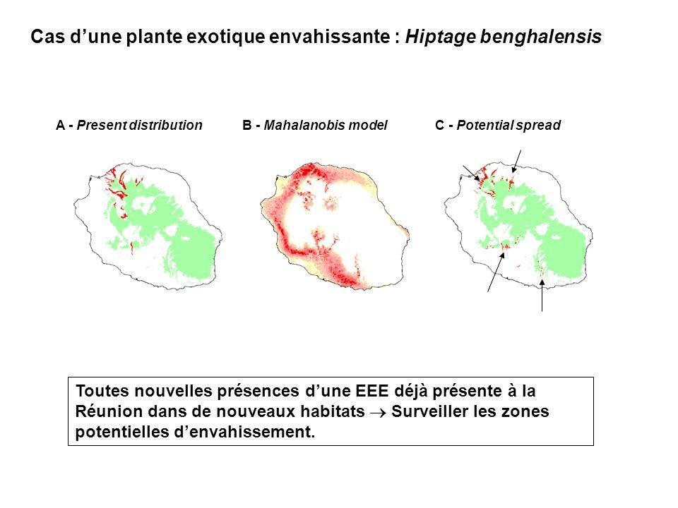 A - Present distributionB - Mahalanobis modelC - Potential spread Cas dune plante exotique envahissante : Hiptage benghalensis Toutes nouvelles présences dune EEE déjà présente à la Réunion dans de nouveaux habitats Surveiller les zones potentielles denvahissement.