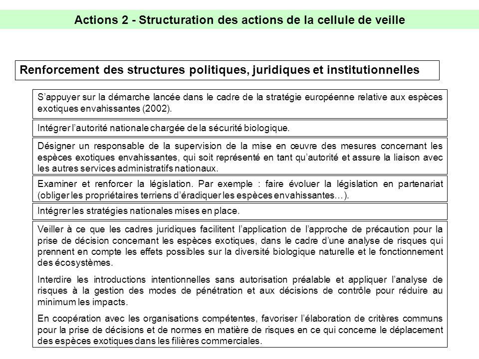 Actions 2 - Structuration des actions de la cellule de veille Renforcement des structures politiques, juridiques et institutionnelles Examiner et renforcer la législation.