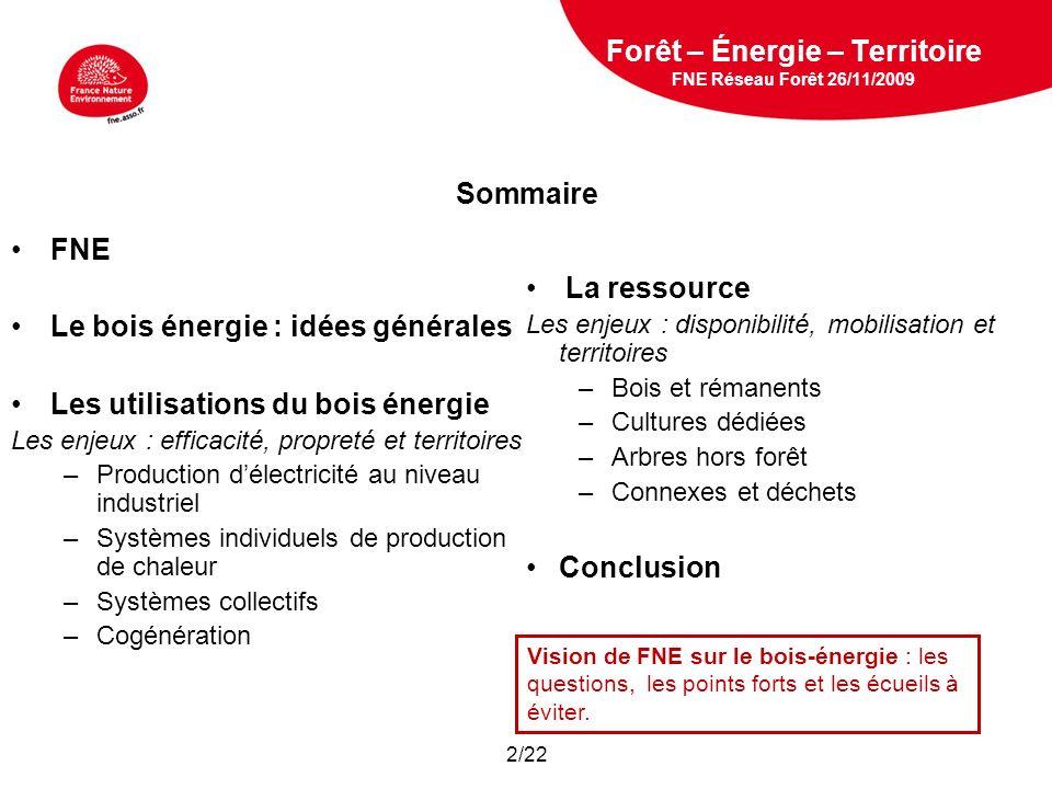 5 février 2009 Forêt – Énergie – Territoire FNE Réseau Forêt 26/11/2009 Vision de FNE sur le bois-énergie : les questions, les points forts et les écueils à éviter.
