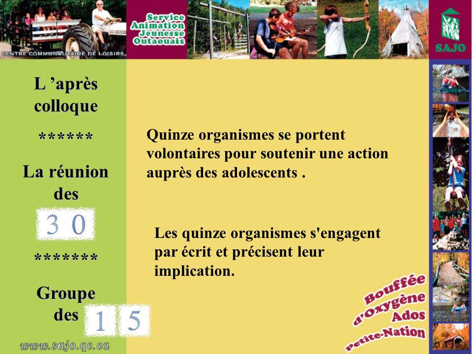 Quinze organismes se portent volontaires pour soutenir une action auprès des adolescents.