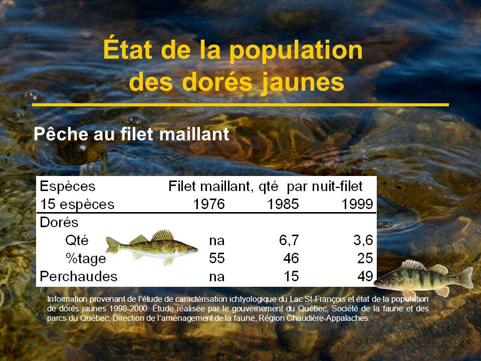 État de la population des dorés jaunes Pêche au filet maillant Information provenant de létude de caractérisation ichtyologique du Lac St-François et état de la population de dorés jaunes 1998-2000.